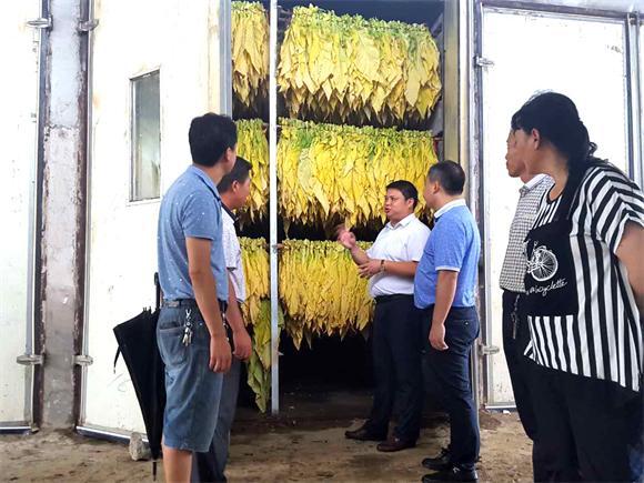 烤烟房前,大富村村干部向前来了解烤烟的镇领导汇报烤烟相关工作.jpg